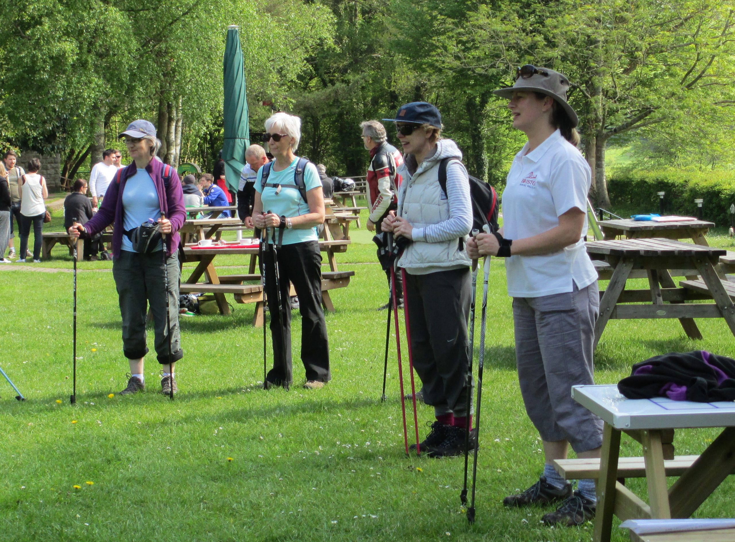 Which Nordic walking pole to buy?