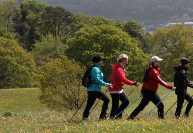 How to Nordic walk: Part I