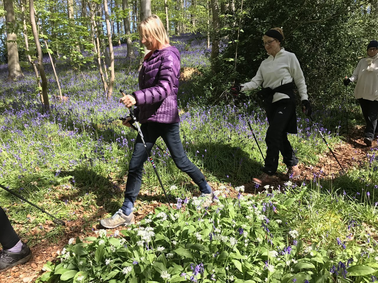 What to wear Nordic walking in the spring/summer, nutritional advice for pollen allergy sufferers and bluebell walks