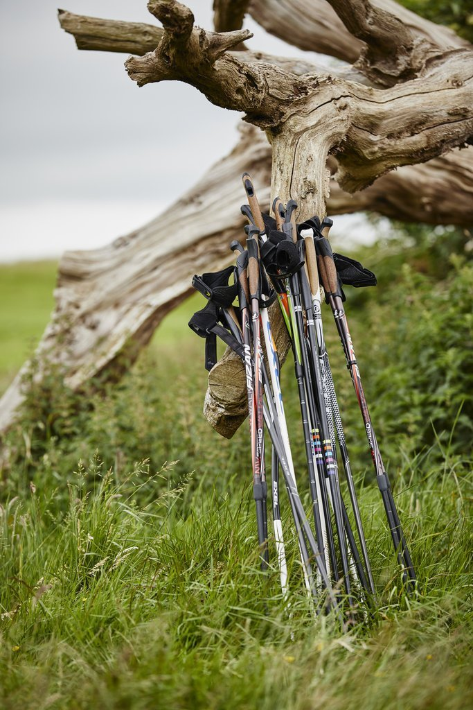 You are currently viewing The best Nordic walking poles