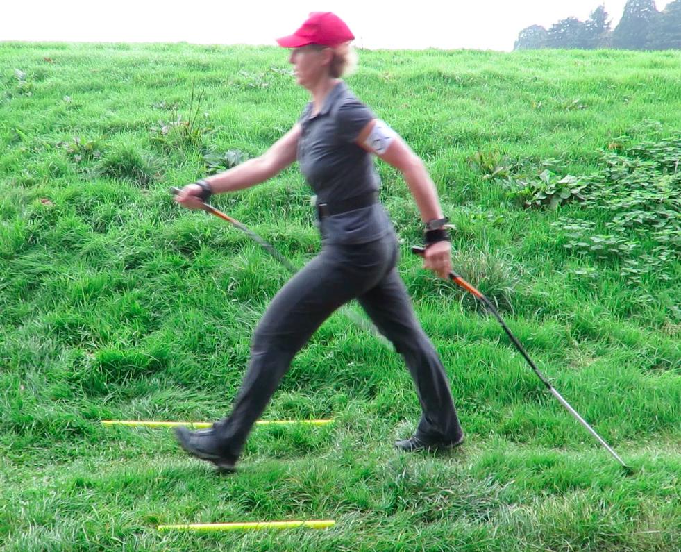 Nordic walking vs ordinary walking: research results