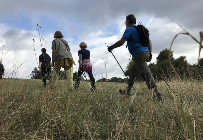 Nutrition and Nordic walking