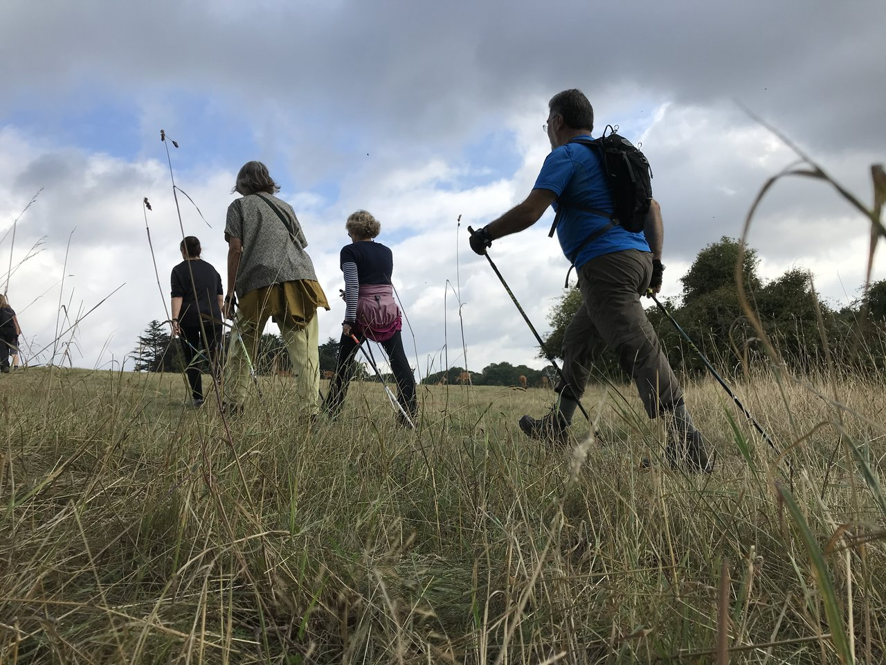 You are currently viewing Nutrition and Nordic walking