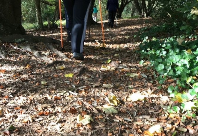 Best posture while Nordic walking