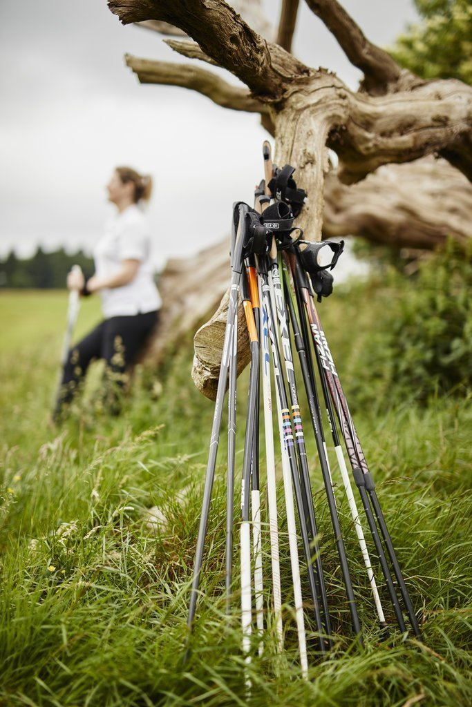 Which Nordic walking pole?